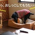 Photos: 放尿(-_-;)