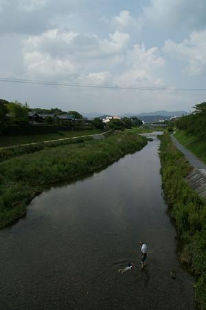 鴨川の水遊び0807te