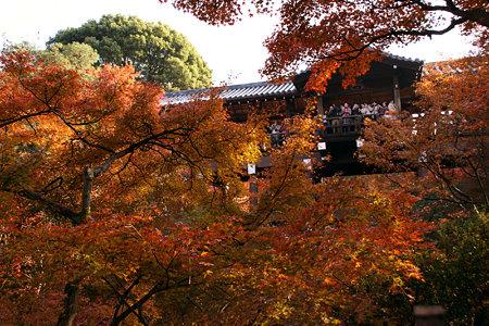 通天橋からの紅葉狩り1129w