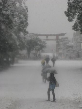 雪舞う三ノ鳥居0203ta