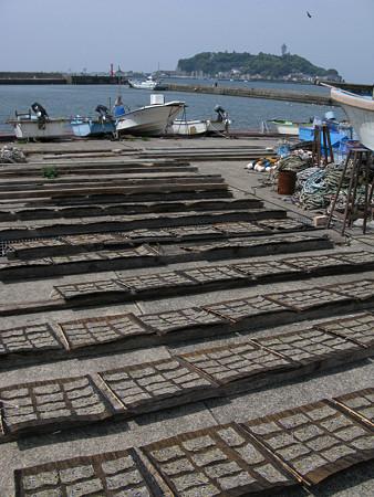 腰越漁港の風景0501tb
