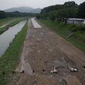 Photos: 後楽園の水害