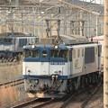 EF64 1043号機牽引高速貨物3050レ宇都宮貨物(タ)入線