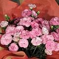 写真: 090509母の日プレゼント