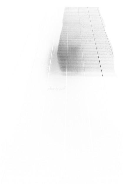 shadow_2009_3_10_3_nega
