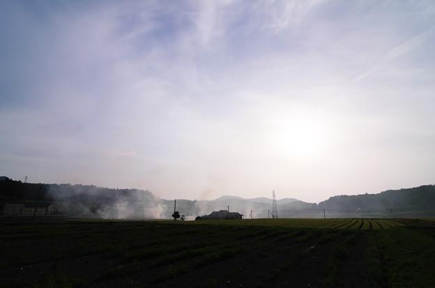 煙たなびく野辺