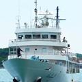 写真: 練習船広島丸の出港
