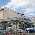 写真: nafuko anpatiten-210315-3