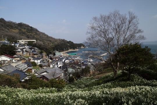 六島の集落