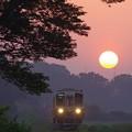 写真: まぁるい夕日が線路を照らす #ひたちなか海浜鉄道 #湊線 金上-中根 2014/06/01