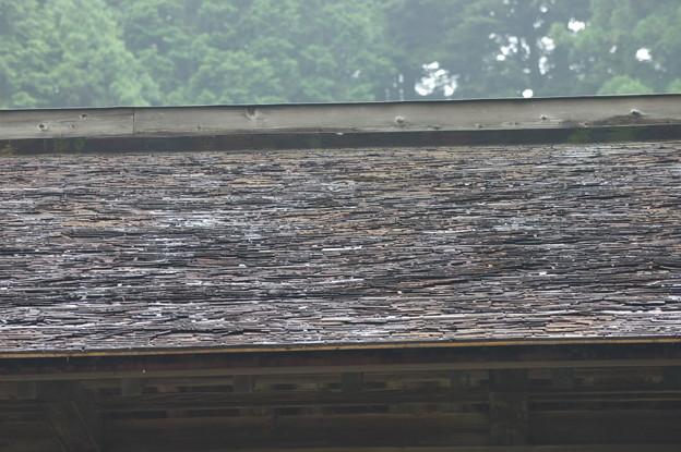 写真: 檜皮葺き屋根・・・荒井家住宅(矢板市)