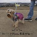 Photos: 州見台公園