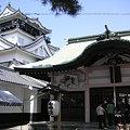 岡崎城(岡崎城と龍城神社3))
