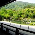 Photos: 天龍寺 日本庭園