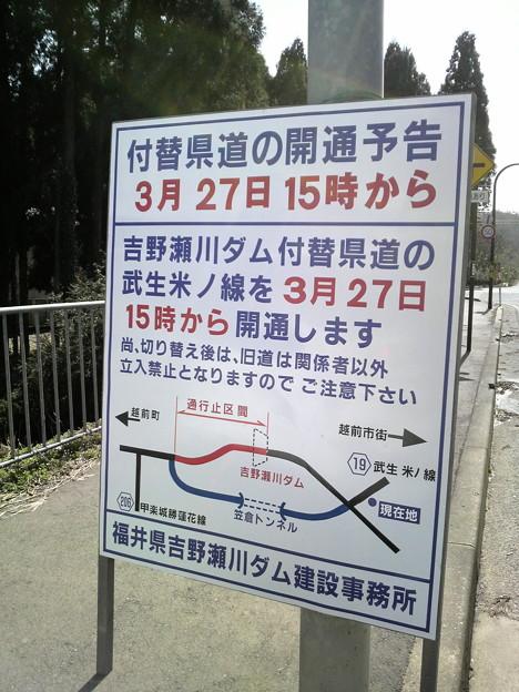 写真: 福井県道19号 武生米ノ線 付け替え道路の開通情報