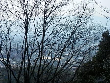 伏見稲荷大社の写真21