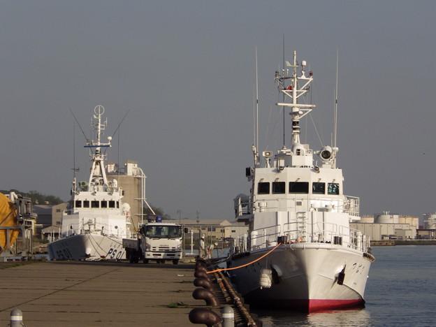 横浜税関・監視艇つばさ&海上保安・巡視船しんざん