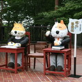 写真: ネコ事務所がお迎え・宮沢賢治記念館
