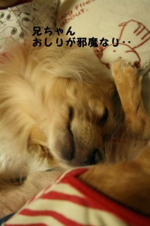 眠れない 3