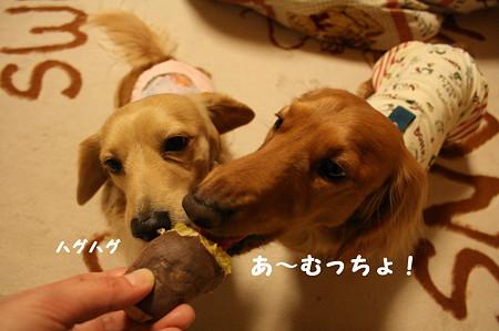 焼き芋 3