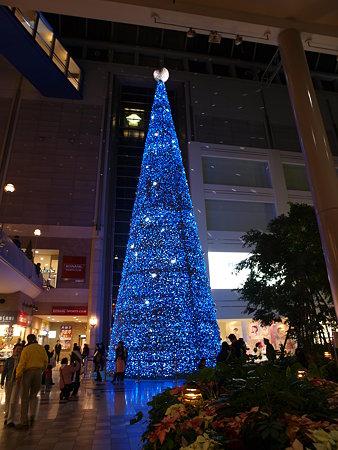 キャナルガーデンのツリー(1)