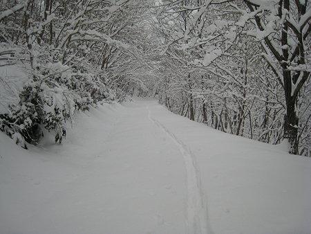 どんどん深くなる雪