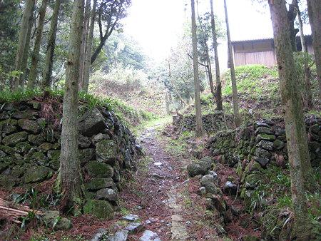 登山道沿いに続く平坦地