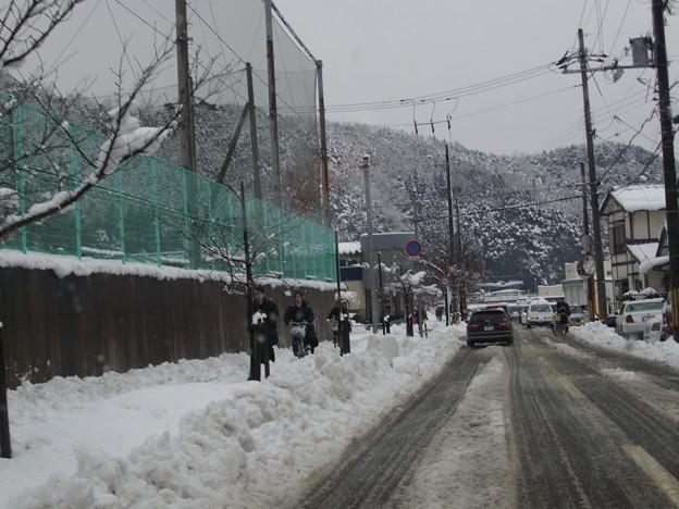 雪の日に学校行くのも大変そう。。。
