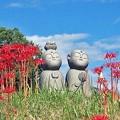 Photos: 彼岸花とお地蔵さま