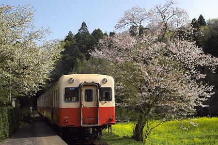 小湊鉄道 14 飯給駅を出る列車